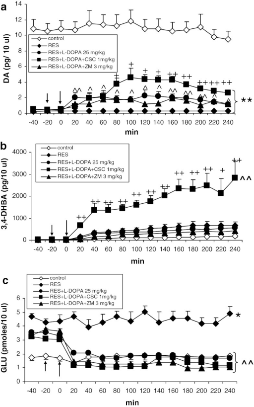 The effects of CSC (1 mg/kg) and ZM 241385 (3 mg/kg) on L-DOPA (25 mg/kg)-induced change in extracellular level of DA (a), hydroxyl radical (3,4-DHBA, b), and glutamate (GLU, c) in the striatum of rats treated with reserpine (10 mg/kg). The injection of drugs is indicated by an arrow. The data are the mean ± SEM (n = 5–7). *P < 0.05; **P < 0.01 versus control; ^P < 0.05; ^^P < 0.01 versus reserpine; +P < 0.05; ++P < 0.01 versus reserpine + L-DOPA