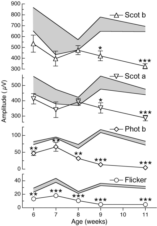 Cone-mediated ERG responses in R6/2 mice are lower than normal at all ages examined.ERG analysis of 6–19 week old R6/2 and wild-type mice at each age (see results). The light-adapted photopic b-wave (Phot b, open diamonds) and flicker (Flicker, open circles) cone-mediated ERG responses are significantly lower in amplitude than age-matched wild-type mice (range in shaded area) at all ages, beginning at 6 weeks of age. The scotopic a-wave (Scot a; open inverted triangles) and the scotopic b-wave (Scot b; open triangles) are significantly lower than wild-type controls beginning only at 9 weeks of age. *P<0.05; **P<0.005; ***P<5×10−6 by student t-test. Error bars represent S.E.M.