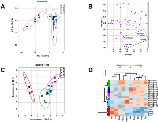 Plasma metabolome discriminates Allo from Syn BMT and untreated controls at Day+4.Lethally irradiated B6 recipients were transplanted with 5×106 T-cell depleted bone marrow cells and 3×106 CD90+ T-cells from B6 Thy1.1 (Syngeneic) or Balb/C (Allogeneic) donor mice (N = 4 per group). Principal component analysis (PCA) and partial-least squares discriminant analysis (PLS-DA) was performed using plasma metabolite concentrations quantified at Day+4. Panel A shows the PCA scores plot. The different colors and letters signify the five groups in the study: Healthy controls (A; red), Syn Day+4 (B; Green), Syn Day+10 (C; Blue), Allo Day+4 (D; Cyan), and Allo Day+10 (E; Purple). Untreated controls and the BMT groups are separated along the PC1 axis whereas Allo are separated from the Syn group along the PC 3 y-axis. Solid line shows the direction of Allo separation from Syn. Panel B shows the corresponding PCA loading plot for PC1 and PC3 shown in panel A. Total Cysgly, GSH, Cys, Trp and Cysth were variables that contributed the most to the separation of groups identified by the PCA analysis. Panel C shows the PLS-DA scores plot. The group IDs are represented by letters and colors described in Panel A. Panel D shows the heat-map generated from the top 10 metabolites contributing to group discrimination as identified by PLS-DA analysis. Each metabolite is arranged in columns and the individual concentrations within a column are normalized by respective median concentrations. Rows represent different mice and their group ID is shown on the right side of each row. These group IDs are represented by different colors on the left side that correspond to the same color codes in Panels A and C. Concentrations that are two fold above or below the mean are highlighted in amber or in blue, respectively. Dendogram and the 3 nodes (1–3) classified by hierarchical clustering analysis are shown on the left.