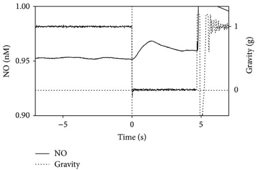 Typical nitric oxide curve measured in the oximeter chamber during a drop in the ESA Drop Tower campaign.