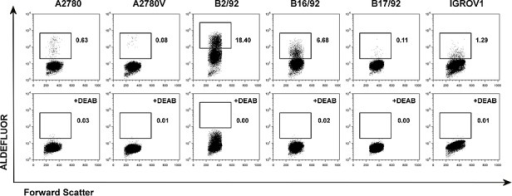 Screening of various ovarian cancer cell lines for ALDH+ subsetsCell lines were stained for ALDH enzymatic activity and analyzed by flow cytometry. ALDH+ subsets are indicated by rectangular gates, and the percentage of cells within these gates is given (upper row). Corresponding DEAB inhibition controls are shown in the lower row. Data are representative examples of at least three independent experiments. ALDH, aldehyde dehydrogenase; DEAB, diethylaminobenzaldehyde.