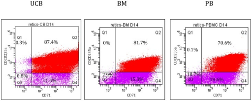 FACS analyses of the CD235a+/CD71+ cells from UCB, PBMNC and BM, after 5 days of expansion and 14 days of differentiation.The Q2 gate represents the population positive for CD235a (Per-CP-Cy5-5) and CD71 (PE).