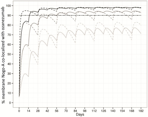 Model simulations of percentages of membrane Nogo-A co-localized with ozanezumab following one-hour infusion at 5, 10 and 20 mg/kg/h every 28 days (dashed lines); and at 2.5, 5 and 10 mg/kg/h every 14 days (solid lines).