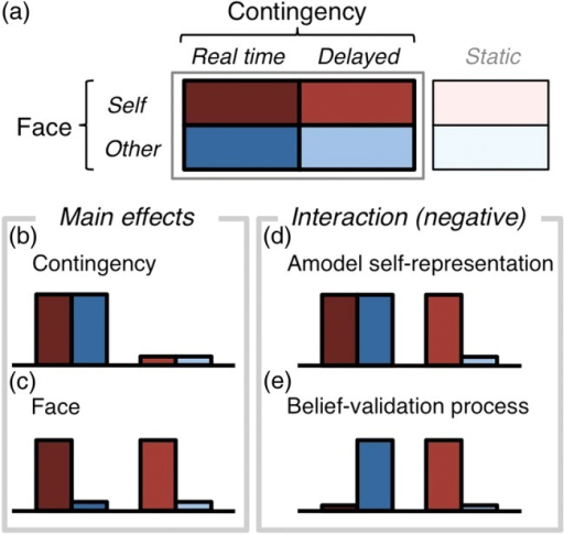 Design of the analyses. (a) Four conditions were assessed using a 2-by-2 factorial design composed of 2 factors: Contingency (Real-time, Delayed) and Face (Self, Other). Expected activation profiles for the main effects of Contingency (b) and Face (c) assumed responses to the contingency and figurative cues, respectively (i.e., perception-level processes). Expected activation profiles for negative interaction assumed 2 semantic-level processes: the amodal self-representation (d) and the belief-validation process (e). The Static condition was used post hoc to examine whether the identified face effect was dependent on facial motion.