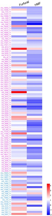 Comparison of transcription levels for selected relevant genes in A. resinae ZN1 in response to 1 g/L of furfural or HMF. Quantitative expression level for each gene is log2 transformed from raw fold changes against that at 0 h. Red indicates up-regulated expression and blue for down-regulated expression as indicated by a color bar at the figure right. The different relevant genes are listed on the figure left and the color from top to bottom indicates different categories of genes: purpleADH genes, blueAKR/ARI genes