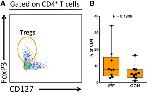 Proportion of regulatory T cells (Tregs) within total lung CD4+ T cells. Tregs were identified as CD3+CD4+FoxP3+CD127− cells (A). The proportion of Tregs does not differ between IPF and non-IPF controls (GOH) (B). Significance determined by Mann–Whitney test.