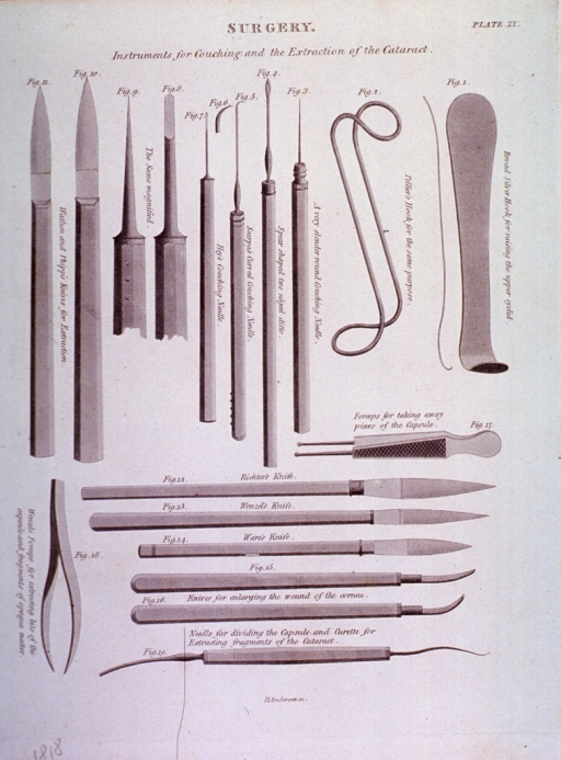 <p>Several types of instruments (hooks, needles, knives, and tweezers) are shown.</p>