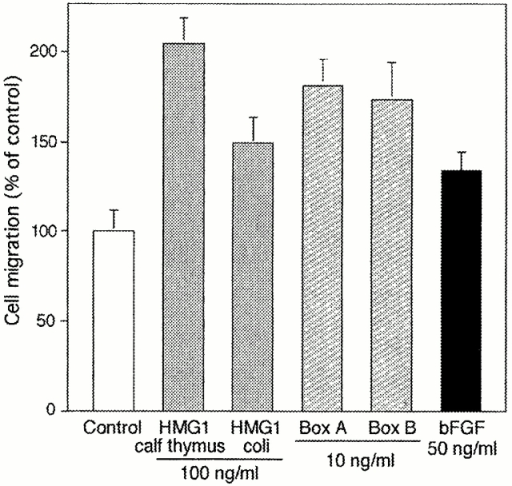 Effects of HMG1 and its HMG boxes on RSMC migration into a wound. Monolayers were wounded and allowed to recover for 48 h in the presence of the indicated molecules. Then, RSMC that had migrated into the wound were counted as described in Materials and Methods. The value of 100% corresponds to the number of cells migrating in the absence of any stimulator (random cell migration). The data represent the mean ± SD (n = 5). Statistical significance was 0.05 < P < 0.01 for treatment with bFGF and full-length E. coli–made HMG1, 0.01 < P < 0.001 for treatment with Box A and Box B, and 0.001 < P < 0.0001 for treatment with calf thymus HMG1.