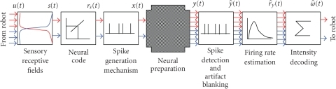 Computationalarchitecture of the closed-loop system. The signals coming from the infraredsensors (IR) of the robot are translated into patterns of stimuli that aredelivered to the neural preparation through a set of selected stimulatingelectrodes. Then the activity recorded by two groups of electrodes is evaluatedin terms of firing rate (i.e., mean number of detected spikes/s) and used asdriving speed for each of the robot's wheel.