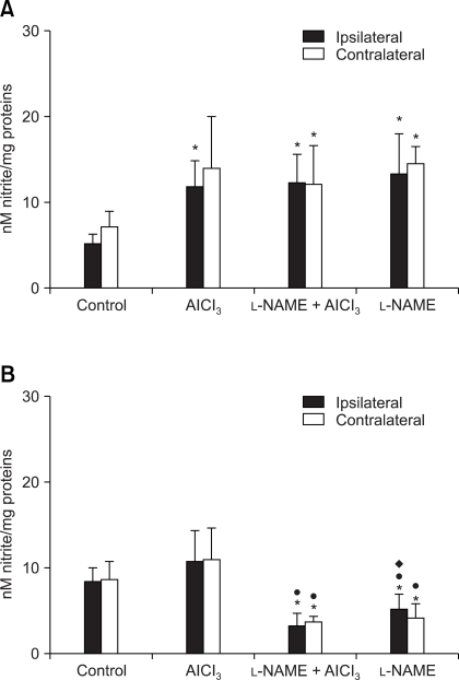 The effects of intrahippocampal drug injection on nitrite levels (nM nitrite/mg protein) in the rat ipsilateral and contralateral forebrain cortex at different survival times: 3 h (A) and 30 d (B). Results are means ± SD of 10 animals. *Indicates a statistically significant difference between treated (AlCl3-, L-NAME + AlCl3- and L-NAME-treated) and control (sham-operated) animals (p < 0.05). •Indicates a statistically significant difference between treated (L-NAME + AlCl3- and L-NAME-treated) and AlCl3-treated animals (p < 0.05). ♦Indicates a statistically significant difference between L-NAME-treated and L-NAME + AlCl3-treated animals (p < 0.05).