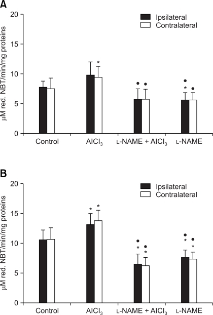 The effects of intrahippocampal drug injection on SOD activities (U/mg proteins) in the rat ipsilateral and contralateral forebrain cortex at different survival times: 3 h (A) and 30 d (B). Results are means ± SD of 10 animals. *Indicates a statistically significant difference between treated (L-NAME + AlCl3- and L-NAME-treated) and control (sham-operated) animal (p < 0.05). •Indicates a statistically significant difference between treated (L-NAME + AlCl3- and L-NAME-treated) and AlCl3-treated animals (p < 0.05). ♦Indicates a statistically significant difference between L-NAME-treated and L-NAME + AlCl3-treated animals (p < 0.05).