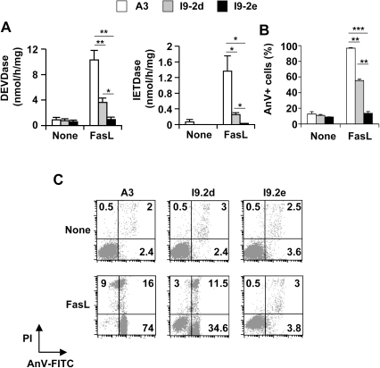 Impairment of FasL-induced caspase activation and apoptosis in caspase-8 and -10-doubly deficient Jurkat cells.A, B, A3 (white bars), I9-2d (grey bars) and I9-2e (black bars) Jurkat cells were incubated for 8 hours in the presence or absence of 500 ng/mL FasL as indicated. Caspase activities were assessed using Ac-DEVD-AMC or Ac-IETD-AMC (A). Cells were stained with annexin-V-FITC and propidium iodide and analyzed by flow cytometry. Percentages of annexin-V-positive (AnV+) are indicated (B). All data are means ± SEM of three to four independent experiments. *p<0.05; **p<0.01, *** p<0.001. C, Representative flow cytometry experiment. Low right quadrants: percentages of [AnV-FITC+ propidium iodide (PI)-] cells; Up right quadrants: percentages of [AnV-FITC+ PI+] cells; Up left quadrants: percentages of [AnV-FITC- PI+] cells.