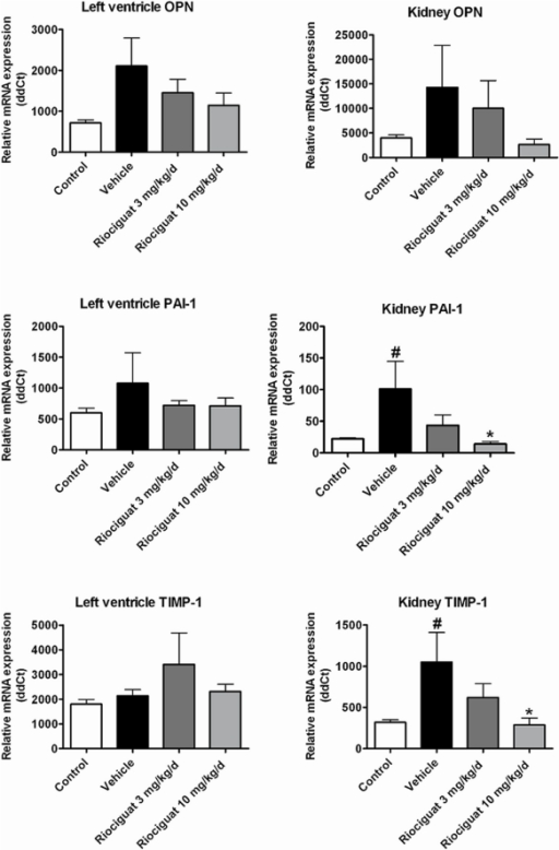 Effects of riociguat on mRNA expression of osteopontin (OPN), plasminogen activator inhibitor-1 (PAI-1) and tissue inhibitor of matrix metalloproteinase-1 (TIMP-1) in the left ventricle and the renal cortex in the vehicle (n = 7) - and riociguat-treated (3 or 10 mg/kg/d, n = 11 per group) Dahl/ss rats maintained on a high-salt diet.Healthy, age-matched animals were used as controls (n = 10). Data are mean±SEM; *p<0.05 vs. the vehicle-treated animals; #p<0.05 vs. healthy controls.