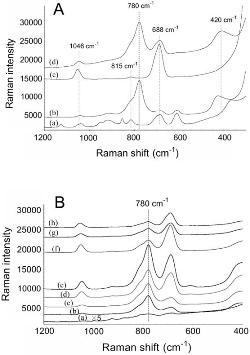 Typical SERS spectra of arsenate using various Ag/GL substrates as active substrates. (A) SERS spectra of arsenate: (a) 0 μg·l-1 (background) and (b) 300 μg·l-1 on Ag/GL-1/0.5-25 substrate; and (c) 0 μg·l-1 (background) and (d) 250 μg·l-1 on Ag/GL-5/2.5-18 substrate. (B) SERS spectra of 200 μg·l-1 arsenate on various Ag/GL substrates prepared in 5/2.5 mM AgNO3/BuNH2 ethanolic solution at different reaction times: (a) 2 h, (b) 3.5 h, (c) 5 h, (d) 9 h, (e) 18 h, (f) 25 h, (g) 31 h, and (h) 40 h. The samples were air-dried before SERS measurements. The spectra were shifted vertically for clarity but the relative intensity was kept unchanged except for the curve a in (B).