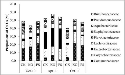 Operational taxonomic units (OTUs) for families detected by PhyloChip™ G3 hybridization of Huanglongbing (HLB)-affected citrus. The citrus plants were treated with different antibiotic combinations and leaf samples were collected at different times (October 2010, April 2011 and October 2011) over a year. Proportions of OTUs for the most highly represented families are represented over the sampling time points. The size of each block in the family abundance bar chart represents the number of detected OTUs in that family relative to the total number of OTUs detected with the same treatment over the sampling time points. PS: 5 g/tree penicillin G potassium and 0.5 g/tree streptomycin; KO: 2 g/tree oxytetracycline and 1.0 g/tree kasugamycin; and CK: water as control.