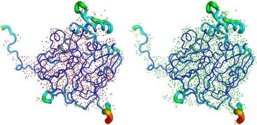 Left: the X-ray structure of AcNiR (from Achromobacter cycloclastes), showing the number of H atoms visible (1649) in the electron density maps at 0.87 Å resolution. Right: the same X-ray structure of AcNiR but showing all 2700 expected H atoms in the structure; 61% of expected H atoms are observed in this 0.87 Å resolution X-ray structure.