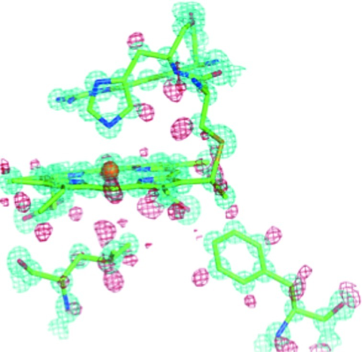 The heme binding pocket of AxCytCp at 0.84 Å resolution, showing electron density for H atoms (in red) associated with key residues Leu, Phe or Met. The 2Fo − Fc electron density map (in cyan) is contoured at 1.5σ, and the Fo − Fc hydrogen omit map (in red) is contoured at 2.0σ.