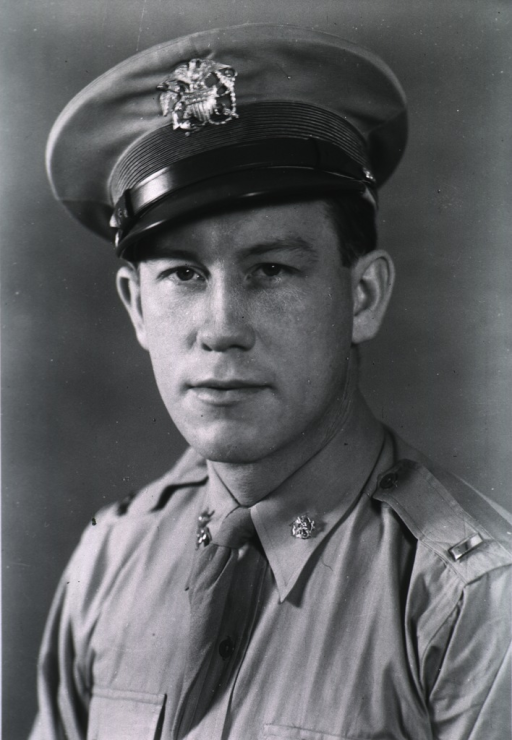 <p>Half-length, full face, body to left, wearing U.S. Army uniform and cap.</p>