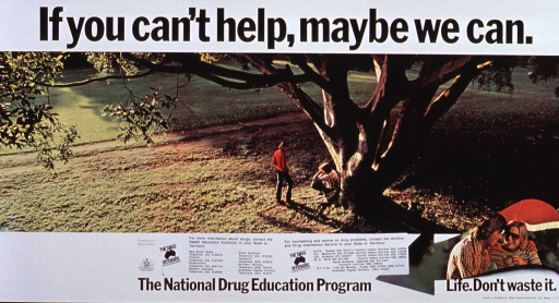 <p>White poster with black lettering.  Title at top of poster.  Central visual image is a reproduction of a color photo.  The photo shows a verdant landscape with a tree.  A young man sits under the tree with his head in his hands.  A friend stands nearby and is glancing down toward the young man.  Another smaller photo in the right corner features a close-up view of a man and woman with their arms on each other's shoulders.  The woman drinks a cup of coffee.  Remaining text below images.  Two stickers with various phone number and the logo for the Drug Offensive have been put on the poster below the photos.</p>