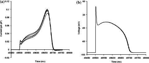 Action potential simulations. 5 accepted models from fitting to data under the complex protocol plus the two qualitative constraints in an action potential model14 at a cycle length of 500 ms. In order to produce action potential durations similar to the original model, all 5 Markov type models were scaled by a factor of 5. (a) IKr currents. (b) Action potentials