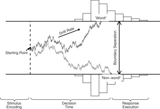 The DDM and its key parameters, illustrated for a lexical decision task. Evidence accumulation begins at starting point z, proceeds over time guided by mean drift rate v, but subject to random noise, and stops when either the upper or the lower boundary is reached. Boundary separation a quantifies response caution. The predicted RT equals the accumulation time plus the time required for non-decision processes Ter (i.e., stimulus encoding and response execution).