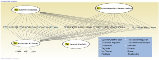 Analysis of SREBP1 gene network for disease functions.