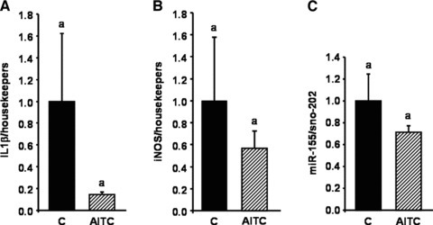 Effect of allyl-isothiocyanate (AITC) on IL-1β, iNOS and miR-155 in mice fed a pro-inflammatory high-fat diet. Female C57BL/6 mice were fed a pro-inflammatory high-fat diet for eight weeks. After seven weeks, the mice were applied 15 mg AITC per kg body weight or PBS (control) via oral gavage daily for seven days. Following RNA extraction from mouse liver levels of IL-1β (A), iNOS (B) and miR-155 (C) were measured by real-time PCR. Each bar represents the mean (±S.E.M.) from nine or 10 animals. Means without a common letter differ significantly (P < 0.05).