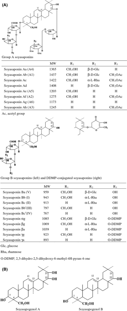 Chemical structures of group A soyasaponins, group B soyasaponins, soyasapogenol A, and soyasapogenol B. (A) Chemical structure of group A soyasaponins and group B soyasaponins. (B) Chemical structures of soyasapogenol A and soyasapogenol B.