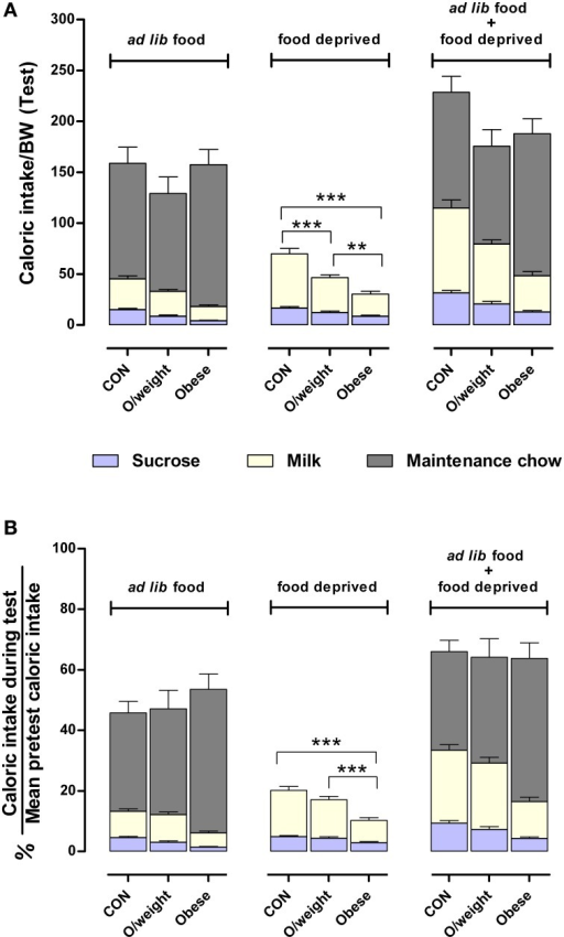 Mice adjust their intake of different foods to maintain a similar daily caloric intake relative to body mass. Comparisons between control (CON), overweight (O/weight) and obese mice are based on data depicted in Figures 4, 5. (A) Shows caloric intake during 24 h test phase from sucrose and milk, relative to body mass either in the presence of ad lib maintenance diet (NC, LF-HC, HF-HC) or in the absence of maintenance diet (food-deprived). (B) Shows caloric intake from sucrose and milk in ad lib presence or absence of maintenance diet, as a percentage of the average daily number calories consumed under standard feeding (solid chow only) conditions. Data shown are means ± s.e.m.; significant pair-wise differences are denoted by **p < 0.01 and ***p < 0.001.