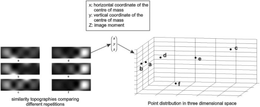Point representation of similarity topographies.For each musical excerpt, the six similarity topographies were represented using points with (x,y,z) coordinates. The three dimensional distribution of these points are shown for the representative similarity topographies. The distribution of the points in space corresponded to the consistency of the similarity topographies (i.e. points corresponding to similar topographies are closer in the three dimensional space on the right). The point coordinates were normalized to facilitate representation, in this figure.