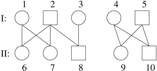 A 2-generation pedigree, the right component is monogamous.