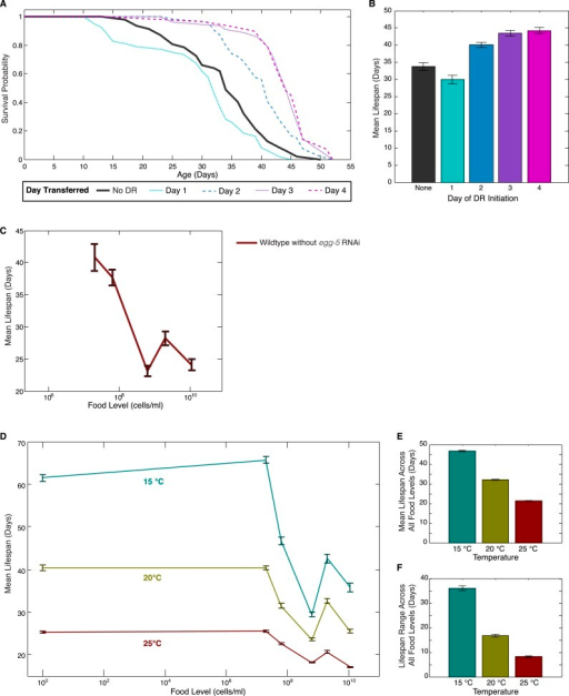 Effects of DR initiation time, temperature and egg-5(RNAi) on the lifespan response.(A) Survival curves for worms transferred from the baseline, abundant level of food (2 × 109 cells/ml) to a more limited food condition (2 × 105 cells/ml) at different days of adulthood. Different days of DR initiation result in substantial differences in survival trajectories. (B) The mean lifespan response of these worms shows lifespan extension for animals transferred on day 2 or later but a negative effect on lifespan for animals subjected to DR from day 1 of adulthood, possibly due to developmental effects. (C) Wildtype worms show a similar lifespan response to exposed different food levels in the absence of egg-5(RNAi). (D) The pattern of lifespan modulation by food abundance is maintained across the range of standard C. elegans culture temperatures. (E) Increased temperature consistently lowers mean lifespans across all food levels. (F) Increased temperature also consistently lowers the range of lifespan modulation achieved by alterations in food.DOI:http://dx.doi.org/10.7554/eLife.06259.007