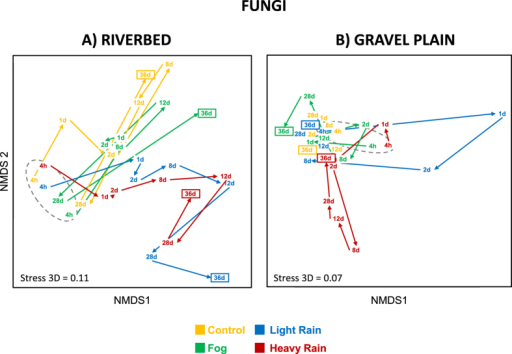 NMDS ordination of fungal community structure inferred from OTUs relative abundance (obtained from T-RLFPs) originated from the riverbed (A) and gravel plain (B) Different colors denotes for the different water treatments. Points in the ordination are mean of the 3 replicated microcosms per treatment and per sampling time (4 h, 1, 2, 8, 12, 28 and 36 days). Arrows between points revealed the shifting direction of each community between sampling time and grey dashed line surrounds the first sampling time of each treatment.