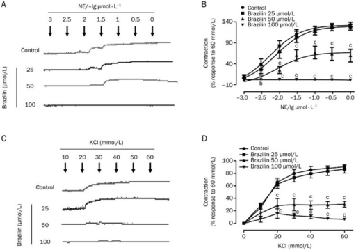 Inhibitory effects of brazilin (25, 50, and 100 μmol/L) on concentration-response curves of NE (10−9–10−6 mol/L) (A and B) and KCl (10–60 mmol/L) (C and D) in endothelium-intact aortic rings. The relaxant effects of brazilin on isolated rat aortic rings were calculated as a percentage of the contraction in response to the second time of KCl (60 mmol/L). Data are expressed as mean±SEM. n=6. bP<0.05, cP<0.01 compared with control.