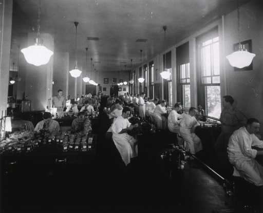 <p>Interior view: men in white lab gowns are sitting at tables under the windows along the wall; an empty lab table is in front of another row of men sitting at lab tables, some in uniform, others in white lab gowns; by the pillars, sitting at square tables with drawers, are men looking into microscopes; light fixtures hang from the ceiling.</p>