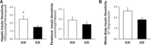 Hepatic insulin sensitivity and peripheral insulin sensitivity from the hyperinsulinenimic-euglycemic clamp with stable-isotope–tracer infusion (A) and whole-body insulin sensitivity from the OGTT (B) in the K/K (□) and E/E (■) groups. Values are means ± SE. *P < 0.05 for the differences between groups.