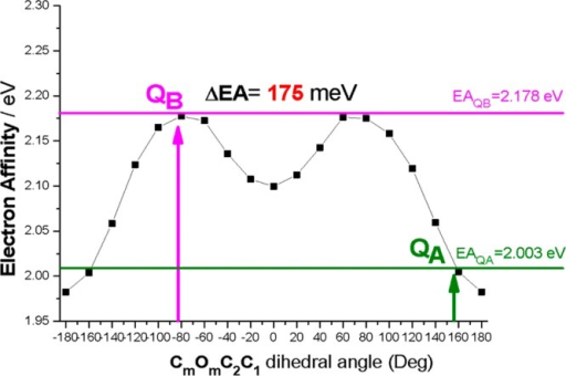 Variation in EA as a function of the CmOmC2C1 dihedralangle for the model shown in Figure S1a (SupportingInformation). Bold vertical arrows indicate dihedral anglevalues for SQA and SQB estimated from Figure 2. The 3-methoxy dihedral angles (CmOmC3C4) forthe QA and QB points are, respectively, −63.5and −66.1°. The horizontal lines are the EA values (QA and QB) for ubiquinone.