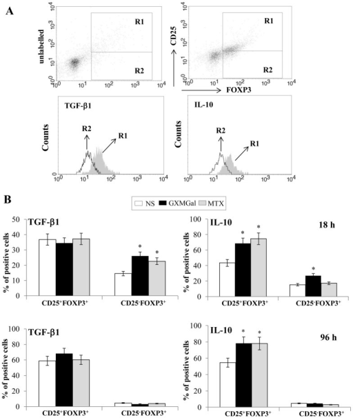 GXMGal effect on Treg cell intracellular cytokines production.Activated purified CD4+ T cells (1×106/ml) from RA were incubated for 18 or 96 h in the presence or absence (NS) of GXMGal (10 µg/ml) or MTX (10 ng/ml). After incubation, cells were stained for cell surface expression of CD25 then intracellular stained for FOXP3 and TGF-β1 or IL-10. For the analysis of intracellular cytokines, CD25+FOXP3+ (R1) and CD25−FOXP3+ (R2) cells were gated on purified CD4+ T cells. The gating strategy was shown (A). The percentage of intracellular TGF-β1 and IL-10 on CD25+FOXP3+ and CD25−FOXP3 positive cells were shown after 18 h or 96 h (B) as mean ± SEM of ten independent experiments. *, p<0.05 (triplicate samples of 10 different RA; treated vs untreated cells).