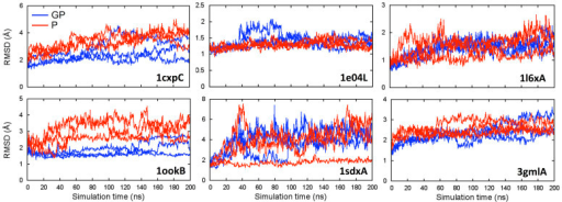 The RMSD time-series of glycosylated (GP, blue) and deglycosylated (P, red) proteins from 200-ns MD simulations.The RMSD was calculated with respect to the initial structure. Each line represents an independent run.