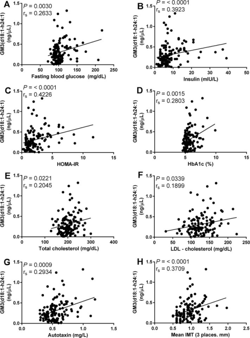 Association between metabolic disease risk factors and GM3(d18:1-h24:1).Correlation of GM3(d18:1-h24:1) with fasting blood glucose (A), insulin (B), HOMA-IR (C), HbA1c (D), total cholesterol (E), LDL-c (F), autotaxin (G) and mean IMT (H). Spearman's rank correlation was used to access correlation between GM3(d18:1-h24:1) and metabolic disease risk factors. All correlations were deemed significant with P values below 0.05.