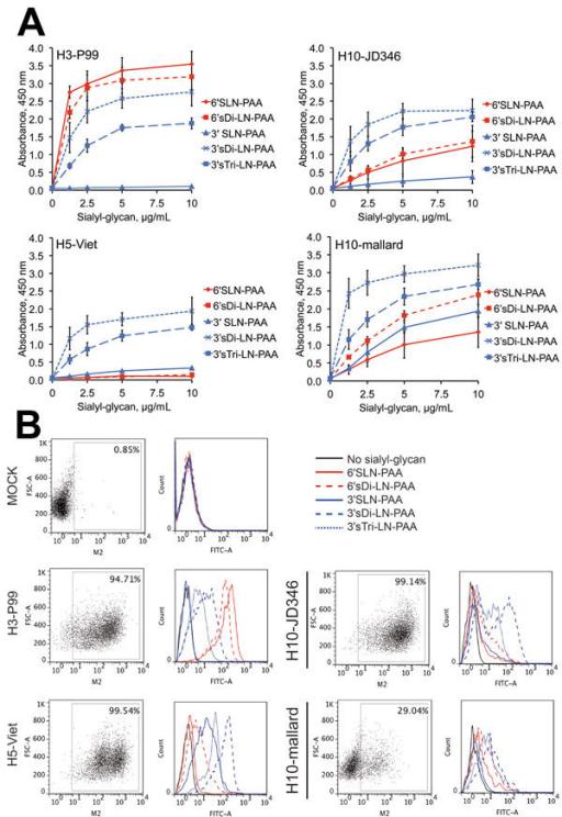 hemagglutinin diagram receptor binding specificity of hemagglutinin of influe open i  receptor binding specificity of
