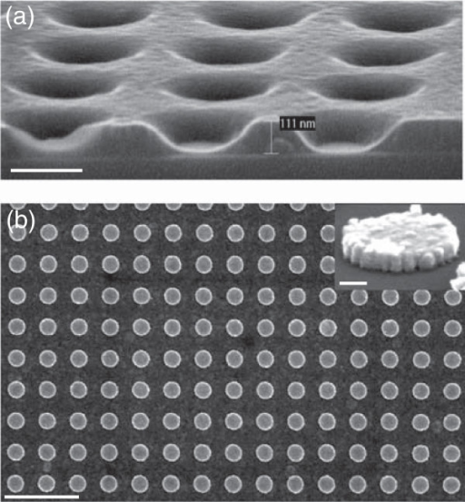 Gold nanocylinder fabrication by UV-NIL.(a) Imprint in AMONIL resist (scale bar = 200 nm), (b) SEM image of the obtained nanocylinders (scale bar = 1 μm), and the inset represents a zoom of a single nanodisk (scale bar = 50 nm).