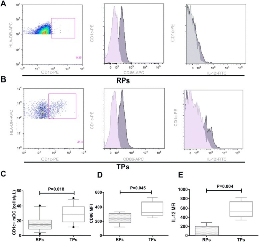 Abnormally low CD1c + mDC counts, CD86 expression, and IL-12 secretion in RPs compared with TPs. a Flow cytometry plots of CD1c + mDC counts, CD86 expression, and IL-12 secretion in RPs. Light gray histograms represented isotype control staining for CD86 expression or IL-12 secretion. b Flow cytometry plots of CD1c + mDC counts, CD86 expression, and IL-12 secretion in TPs. Light gray histograms represented isotype control staining for CD86 expression or IL-12 secretion. c CD1c + mDC counts in RPs and in TPs. d Expression of CD86 on CD1c + mDC in RPs compared with TPs. e Intracellular secretion of IL-12 in CD1c + mDCs from RPs and TPs after stimulation with R848