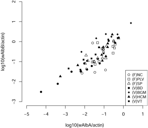 Correlation densities of Wolbachia pipientis. The number of each bacterial strain per cells was evaluated by quantification of wsp genes from each Wolbachia wAlbA and wAlbB strains normalized to the number of host actin gene copies (Pearson's correlation R2 = 0.84, p < 2.2 × 10−16). NC, Nice; PLV, Porte-lès-Valence; SP, Saint Priest; VT, Vung Tàu City; HCM, Hồ Chí Minh City; BD, Bình Du'o'ng, BGM, Bù Gia Mâp.