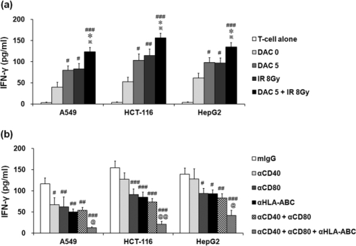 Effects of treatment with decitabine, ionizing radiation (IR), or their combination on IFN-γ production in T cells against target tumor cells.T cells were co-cultured with decitabine, IR or both treated tumor cells (A549, HCT-116, and HepG2 cells) for 4 h (a). For blockade experiments (b), T cells were co-cultured with combination-treated target tumor cells in the presence of 10 ug/ml anti-CD40, CD80, and/or HLA-A,B,C antibody. Then the cell supernatants were harvested and analyzed by ELISA. Results express the average IFN-γ production ± SD in T cells co-cultured with A549, HCT-116, and HepG2 cells. Experiments were independently performed from five healthy donors. The assay was performed in triplicated each donor. Statistical significance was determined using a one-way ANOVA. #P < 0.05, ##P < 0.005, ###P < 0.0005 (#DAC 0 versus other groups, mIgG versus other groups). *P < 0.05 (*DAC 5 versus other groups). **P < 0.05 (**IR 8 Gy versus DAC 5 + IR 8 Gy). @P < 0.05, @@P < 0.005 (@αCD40 + αCD80 versus αCD40 + αCD80 + αHLA-ABC).