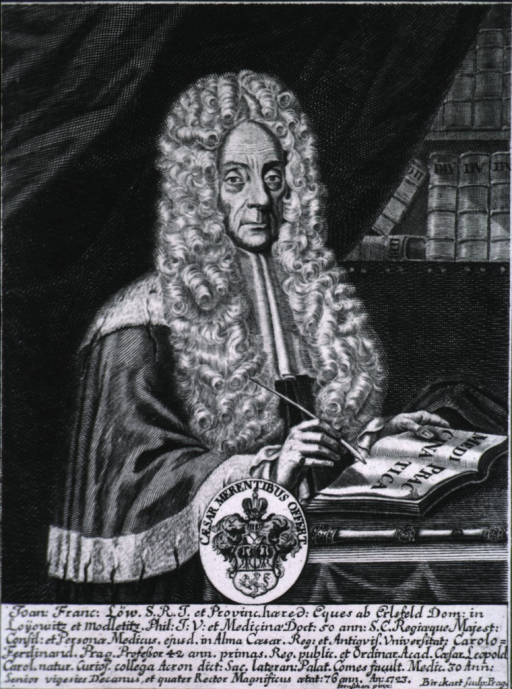 <p>Half-length, right pose, full face; writing with quill pen; bookshelves in background; coat-of-arms.</p>