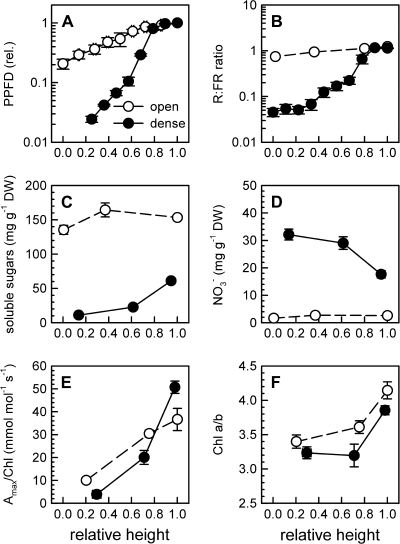 Canopy density effects on putative signal parameters and photosynthetic acclimation in tobacco. Shown are PPFD (A), R: FR (B), soluble sugars (C), and nitrate (D), photosynthetic capacity per unit chlorophyll (Amax/Chl) (E) and the chlorophyll a/b ratio (Chl a/b) (F) measured in open (3.6 plants m−2) and dense (35 plants m−2) tobacco canopies at three heights representative for maximal, intermediate, and minimal irradiance in each stand. Data are means±SE, n=6–12. Note the log-scale on the y-axis in A and B.