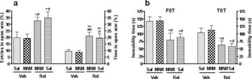Effects of termination of MAM treatment on rolipram-induced anxiolytic- and antidepressant-like behavior in mice. (a) Rolipram-induced increases in the percentages of entries into and time spent in open arms in the elevated plus-maze were not altered after termination of MAM treatment. (b) Rolipram-induced decreases in immobility in the FST and TST were not changed after termination of MAM. Rolipram (1.25 mg/kg) was given (i.p.) for 33 d before the tests were carried out 1 h after the daily drug injection on days 33 (a), 34 (FST), or 35 (TST). MAM (5 mg/kg) was co-administered (s.c.) with rolipram or vehicle for the first 14 d. Values shown are means ± S.E.M of 8−9 mice per group. * p < 0.05, ** p < 0.01 vs Veh + Sal; # p < 0.05, ## p < 0.01 vs MAM + Veh.