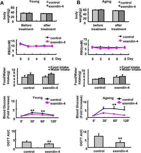 Effect of exendin-4 treatment on body weight, blood glucose, food and water intake and glucose response in A,3 months and B,20–22 months old mice, n = 7 in each group of 3 months old mice, n = 5 in each group of 20–22 months old mice.The values were shown as Mean±SEM, **P<0.05 vs control group, ***P<0.01 vs control group.