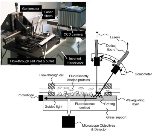 Schematic of the Waveguide Excitation Fluorescence Microscope (WExFM); photograph of the system on a standard inverted microscope. From [10], Copyright Elsevier (2005).